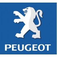استپر موتور پژو 405 - Motor Stepper Peugeot 405